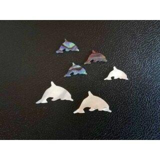 Dolphin model I