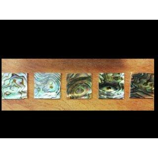 Abalone Paua - 22x22x1,5 mm, II Quality