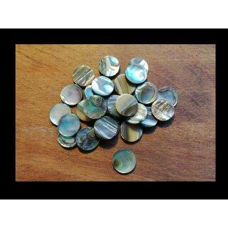 Pearl plates, abalone, ~ 12 mm x 1,2 mm stark